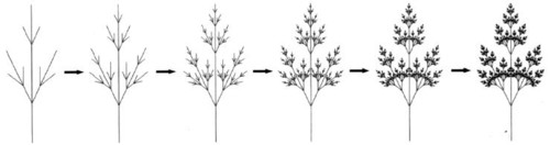 Fig. 1 : L'arbre, un exemple de structure dendritique.